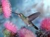 Ilovedogs7 - éleveur d'oiseau Birdrama